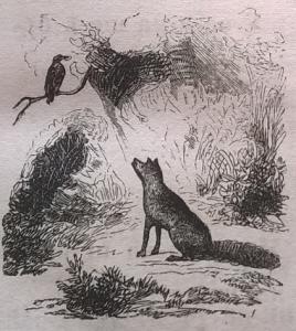 Лиса, лисица, ворона
