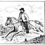 Мужчина, конь, лошадь