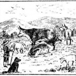 Мальчик, пастух, стадо, собака, пес, корова, коровы, луг