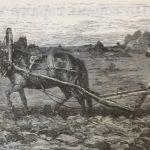 Пахарь, лошадь, поле