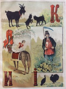 Коза, козлята, лошадь, мужчина, индюк, растения, цветок