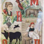 Попугай, медведь, женщина, осел, виноград