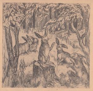 Заяц, зайцы, деревья, лес