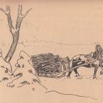 Лошадь, снег, мужчина