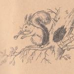 Белка, дудка, дерево